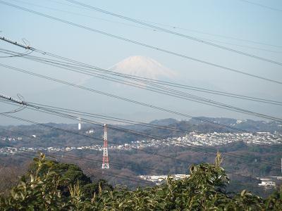 鷹取山から見る富士山