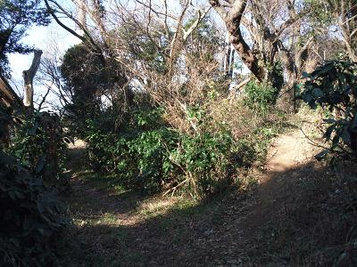 六浦駅への道